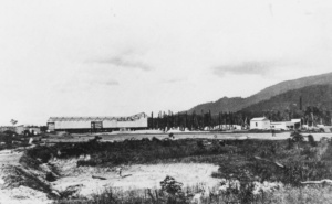 Early Construction of Tully Sugar Mill (Image: State Library of Queensland) | Tully Sugar