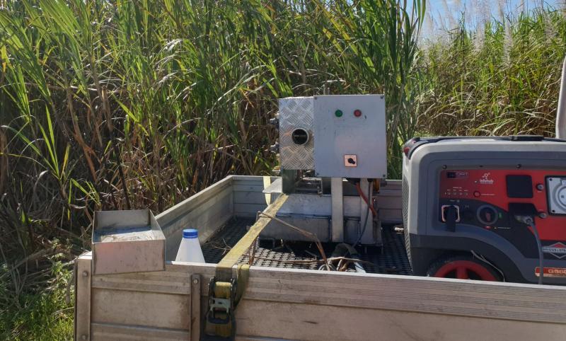 Pre-harvest CCS Sampling